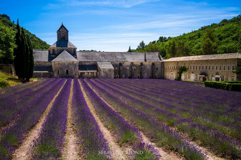 طبیعت پروونس با رنگ و عطر فرانسه